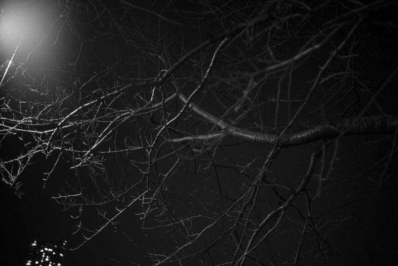 20170110 214557 Leica M-P(Typ240).jpg