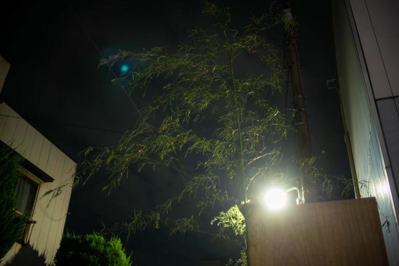 20190602 202951 Leica M-P(Typ240).jpg