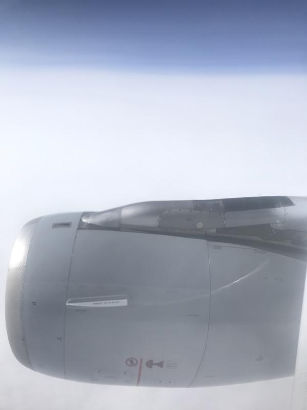 D31E7400-3070-4C61-9BD6-C529277FCDBA.jpeg