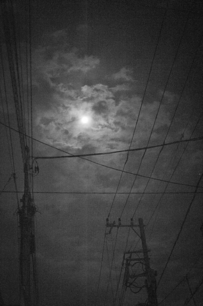 DSC_8572-NIKON D700.jpg